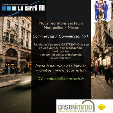 Recrutement Commercial immobillier hf
